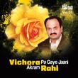 Vichora Pa Gaye Jaani Vol. 31