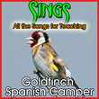 Sings All the Songs for Teaching Goldfinch Spanish Camper