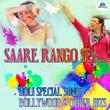 Saare Rango Se - Holi Special Songs