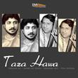 Taza Hawa