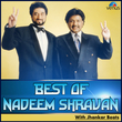 Best of Nadeem Shravan - With Jhankar Beats