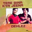 Dehlez / Tere Bina Kya Jeena